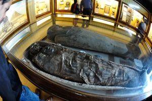 Egyptian_Human_Mummy_-_Egyptian_Gallery_-_Indian_Museum_-_Kolkata_2014-02-14_3291