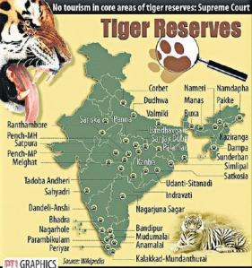 2tiger_graphics_