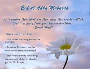362380,xcitefun-eid-ul-adha-messages